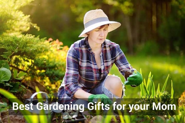 Best Gardening gifts for Mom Amazon